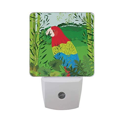 LINGF Nachtlicht Tier Vogel Papagei Bambus, sensor automático LED Nachtlicht Lampe Down to Dusk Plug-in Glühbirne für Kinder Jungen Mädchen Erwachsenenzimmer Flur, 2er paquete