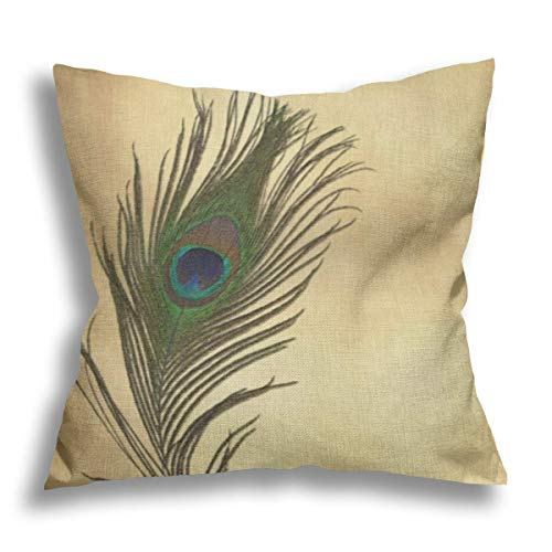 RDXX Vintage Look Peacock Feathers Elegant Flax Pillow Case Decorative Pillow Cushion Cover for Sofa Chair Bed Car Home Office Decor 45x45 cm