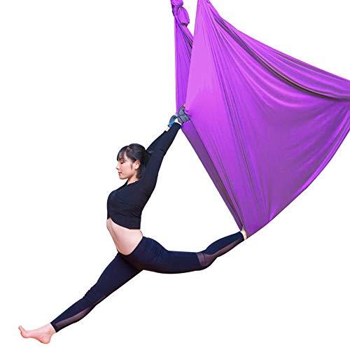 WCX Columpio Swing El Yoga Antigravedad Hamaca Correa Volar para Yoga Pilates Aérea con Mosquetón Y Cadena De Margaritas para Yoga Pilates Antigravedad (Color : Purple, Size : 500x280cm/197x110in)