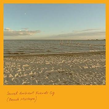 Secret Ambient Friends Gig (Beach Mixtape)