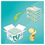 Pampers Premium Protection Windeln, Gr.6, 13-18kg, Monatsbox, 1er Pack (1 x 120 Stück) - 2
