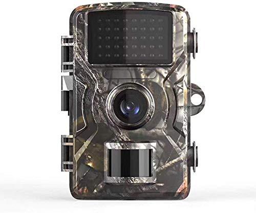 UIGJIOG Camaras Camufladas, Cámara De Vigilancia Impermeable Activada por Movimiento De 32GB 1080P con Pantalla LCD 2.0, Cámara De Visión Nocturna De Gran Angular De 90 °,Natural