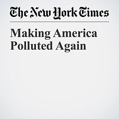 Making America Polluted Again copertina