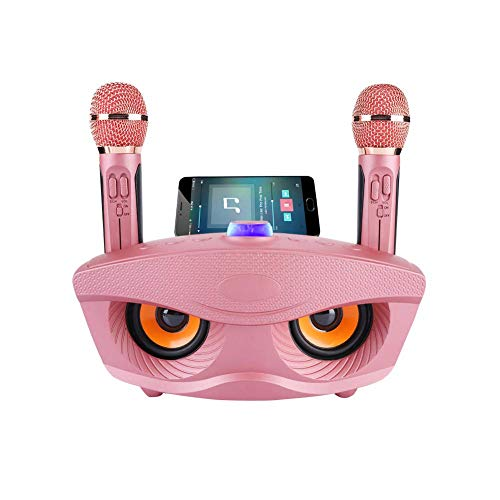 Draagbare karaokemachine, winnaar draadloze bluetooth-luidspreker met 2 microfoons Home karaoke party set voor familie Home ondersteuning AUX TF-kaart U schijf FM-radio, cadeau voor kinderen