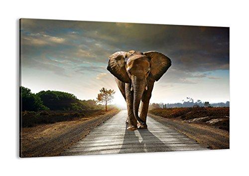 Bild auf Leinwand - Leinwandbilder - Einteilig - Breite: 120cm, Höhe: 80cm - Bildnummer 0214 - zum Aufhängen bereit - Bilder - Kunstdruck - AA120x80-0214