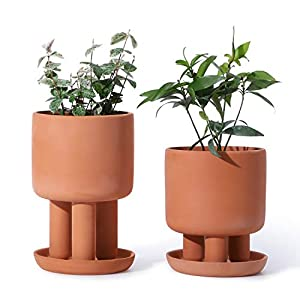 POTEY 053901 Terracotta Succulent Planter Pots – Set of 2 4.5 Inch Small Clay Flower Pots with Saucer for Plant Flower Cactus (3 Legs, Plant NOT Included)