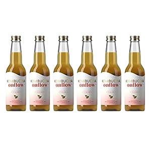 Te Kombucha bebida energetica kombucha scoby probióticos intestinales sin azucar añadido ecológico fermentado / botellas de kombucha Onflow (Manzana - Canela, PACK DE 6 BOTELLAS)