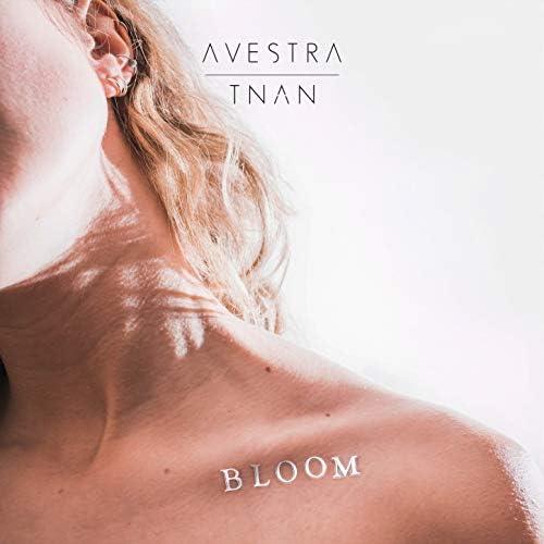 Avestra & TNAN