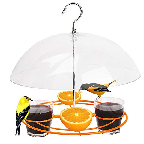 Solution4Patio Baltimore Oriole Feeder, Orange Halves Fruit & Grape Jelly, and Mealworm for Bluebirds, Weather Guard Squirrel Baffle #G-B312A00-US