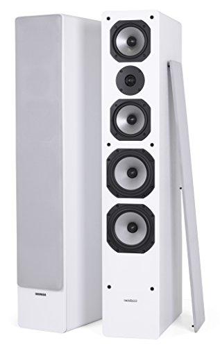 Dynavoice Challenger M-65 EX v4 White - Coppia Diffusori Acustici da Pavimento 3 Vie Bass Reflex per Hi-Fi e Home Cinema. Cabinet in legno MDF con frontale laccato lucido. Tweeter a cupola + doppio medio e Woofer in Kevlar. Sistema X-Change per regolazione db medio/alti.