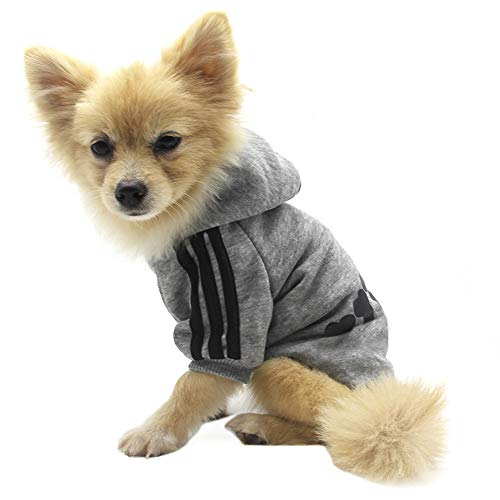 QiCheng&LYS Hundemantel Hund Hoodies Kleidung, Pet Puppy Katze Niedlicher Baumwoll Warm Hoodies Coat Pullover (S, grau)