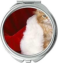 Mirror,makeup mirror,Santa hat cat mirror for Men/Women,1 X 2X Magnifying