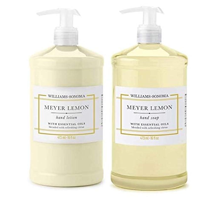 ペイントおとこアートWilliams Sonoma Meyer Lemon Hand Soap and Hand Lotion 16 oz each [並行輸入品]