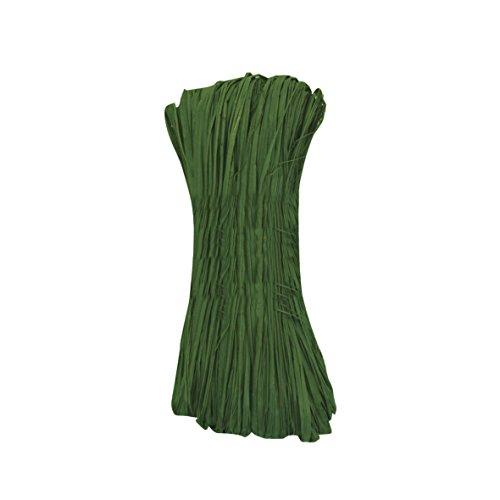 Xclou Naturbast, Bindebast, Dekobast, Bast, aus getrockneten Naturfasern, ca. 50 g, Vielzahl einzelner Fäden, Länge ca. 100 bis 110 cm, grün