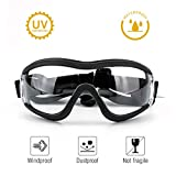 PETLESO Dog Goggles - Large Dog Eye Protection Doggles Windproof Sunglasses for Medium Large Dog, Clear