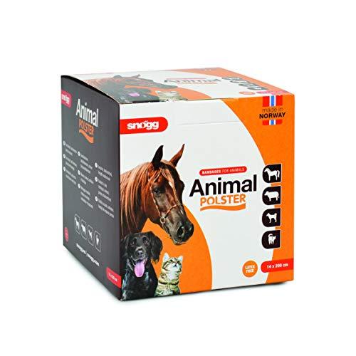 Snögg Animal Polster, orange, Selbstklebender Schaumstoffverband, Bandage für Pferde, Pflaster für Tiere, polsternd (9cm x 2m x 5mm)