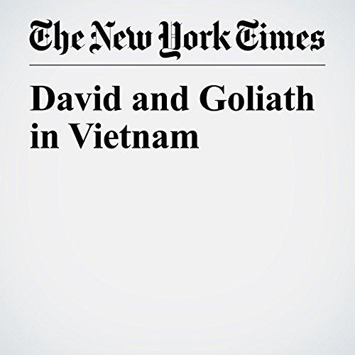 David and Goliath in Vietnam copertina