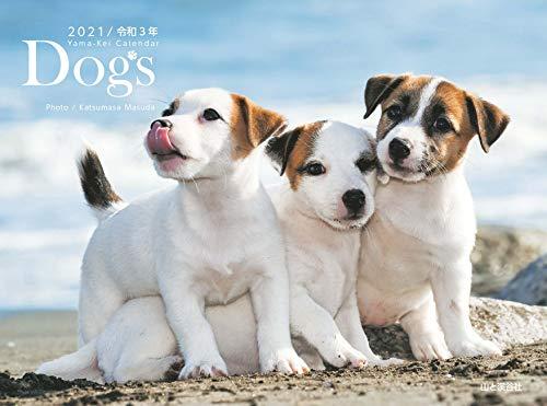 カレンダー2021 Dogs ドッグス (月めくり・壁掛け) (ヤマケイカレンダー2021)の詳細を見る