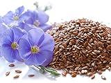 5 Liter ProFair® Leinöl, kaltgepresst, 100% aus reiner Leinsaat - 3