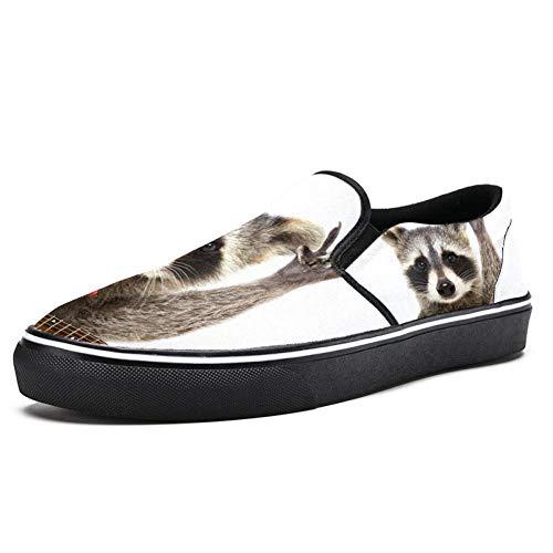 TIZORAX Rocking Racoon mit Gitarre Slipper Loafer Schuhe für Herren Jungen Fashion Canvas Flache Bootsschuhe, Mehrfarbig - mehrfarbig - Größe: 42.5 EU