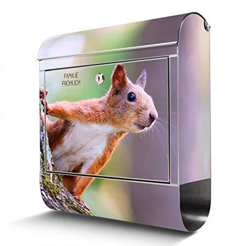 BANJADO Edelstahl Briefkasten mit Zeitungsfach, Design Motivbriefkasten, Briefkasten 38x43,5x12,5cm groß Motiv Eichhörnchen mit eigenem Text