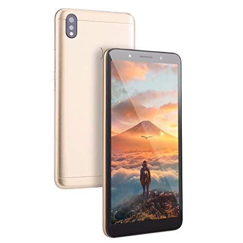 Shan-S Q61 4 Core 6 inch Dual HDCamera Smartphone for Android 5.1 8GB Touch Screen WiFi Bluetooth GPS 4G Fingerprint Unlocked Call Mobile Phone,Dual SIM Card, Best for Kids or Old Man