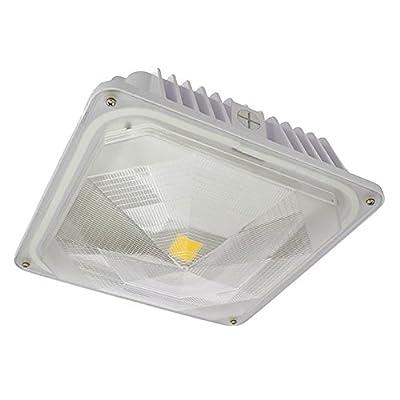 LEDwholesalers Outdoor LED Canopy Ceiling Light Fixture 35-Watt, 3921