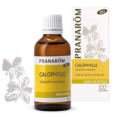 Pranarôm | Huile Végétale Calophylle Bio | Calophyllum inophyllum - Première pression à froid des noix du Calophyllier | 50 ml