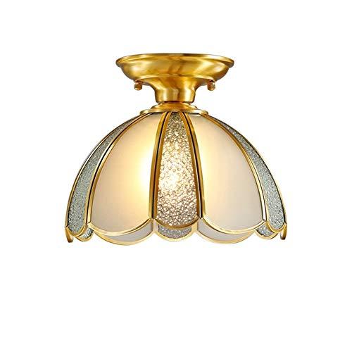 14 Pulgadas LED Elegante Vidrio Mate Lámpara de Araña Iluminación, Forma de Techo de Techo de Forma de Flor con Luz de Techo de Montaje de Color de Cobre