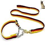 CHLDDHC Guinzagli per Cani di Grandi E Medie Dimensioni Corde di Trazione Morsi di Cane Catene per Addestramento del Cane