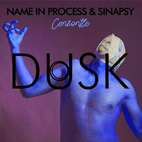 Name In Process & Sinapsy