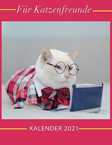 Kalender 2021 Für Katzenfreunde: Katzen 2021 - Geschenk-Kalender mit Monatskalendarium - Format 21 x 28 cm - Bild-Kalender - mit Platz für Notizen - Katzenkalender 2021