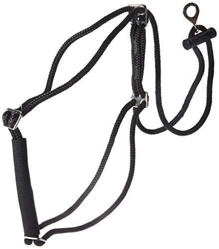 Walk Right Control Harness