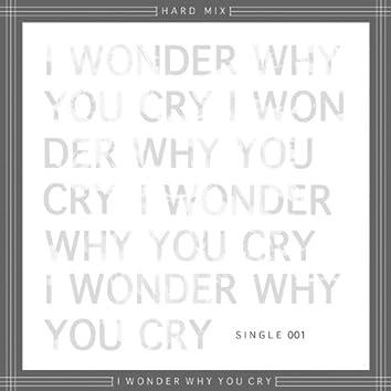 I Wonder Why You Cry - Single