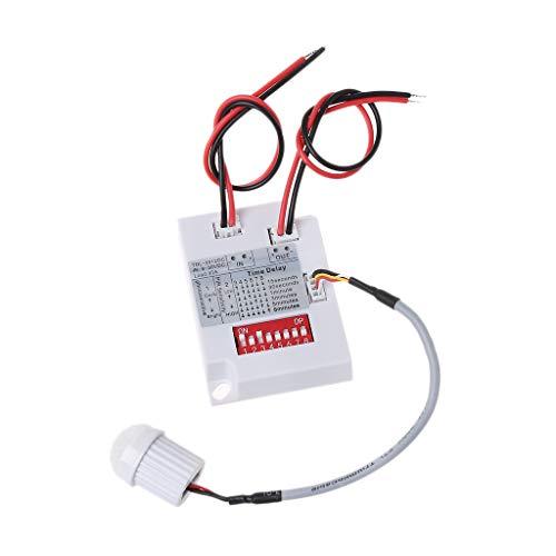 Buwei Interruptor de Sensor de Movimiento PIR TDL-2012 Detector de inducción de Cuerpo infrarrojo IR 12VDC