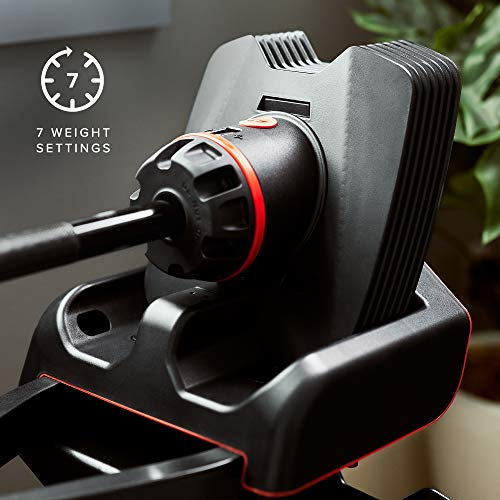 Bowflex SelectTech ST2080 Curl Bar, Black