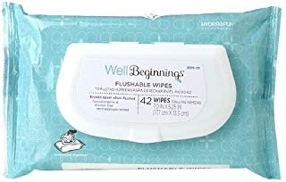 Well Beginnings Flushable Wipes 42 ea (Pack of 3)