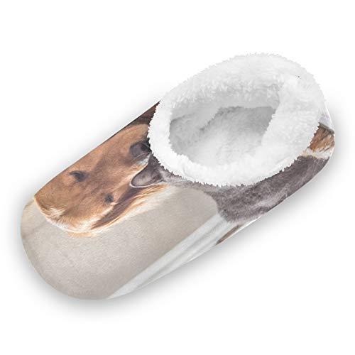 TropicalLife iRoad - Zapatillas de casa con diseño de perros y gatos, antideslizantes, cálidas, para casa, para mujeres y hombres, color, talla Medium