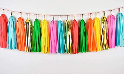 Autupy 35 PCS Taco Bout a Party Tassel Garland Tissue Paper Tassels Banner DIY Kit Baby Shower Party Taco Tuesday Fiesta Party Bachelorette Llama Party Decorations
