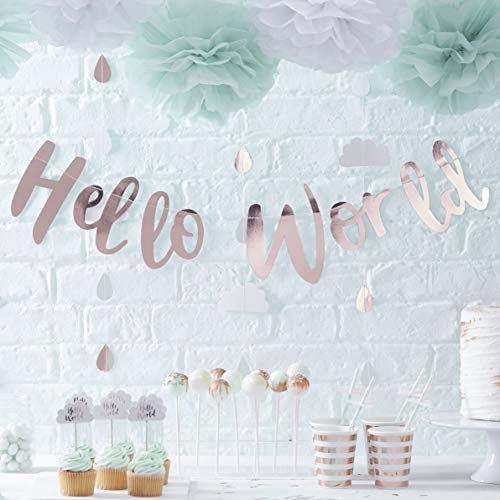 Ginger Ray Rose Gold Hello World Scripted Wimpelkette