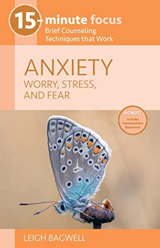15 Minute Focus Anxiety Worry Stress and Fear Brief Counseling Techniques That Work 15 minute product image