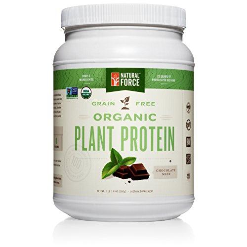 Organic Plant Protein – Chocolate Mint, Best Tasting Vegan...