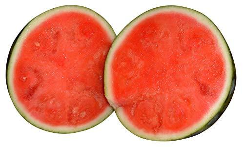 "Wassermelone""Sugar-Baby - 10 Samen"