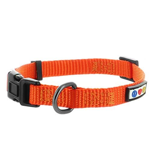 Pawtitas Collar para Perros Ideal para el adiestramiento de tu Mascota, Collar de Perro cómodo y Duradero con Anillo de Metal para Etiqueta de Nombre - Collar Color Naranja S