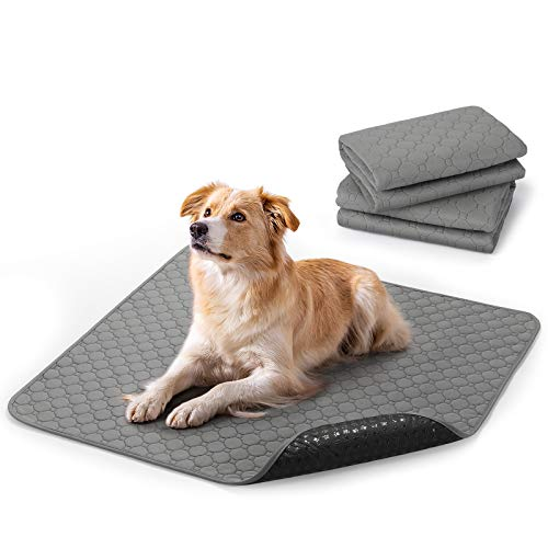 rabbitgoo Washable Pee Pads for Dogs, Reusable Large Waterproof Training Crate Pad, Machine Washable Mat Absorbent Puppy Whelping Pee Pads Suitable for Pet Dogs and Cats, 35