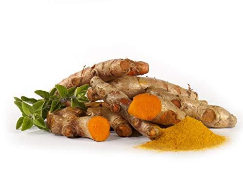 Bio Kurkuma | Frischer Bio-Kurkuma | Fresh organic Curcuma - 250g