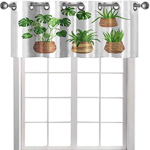 YUAZHOQI Cenefa de cortinas con diseño de acuarela de plantas de interior en cestas de mimbre aisladas en una cenefa de ventana blanca de 137 x 45 cm para dormitorio