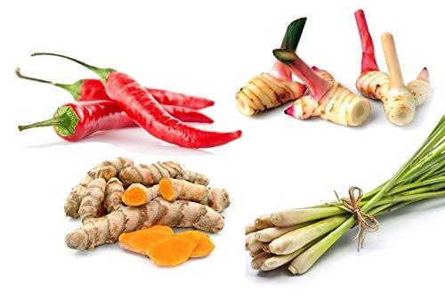Pamai Pai® 400g Thai Gemüse Set: Kurkuma - Galgant - Zitronengras - Rote Thai Chili frisch