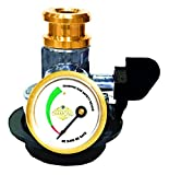 India's Reduce 30% Gas Consumption Diamond Gas Safety Device, Auto Gas Leakage Detector