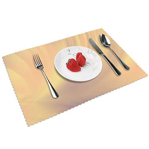 Juego de 4 manteles individuales para interiores y comedores, reutilizables, lavables, 45 x 30 cm